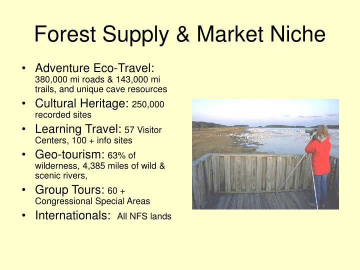 Forest Supply & Market Niche
