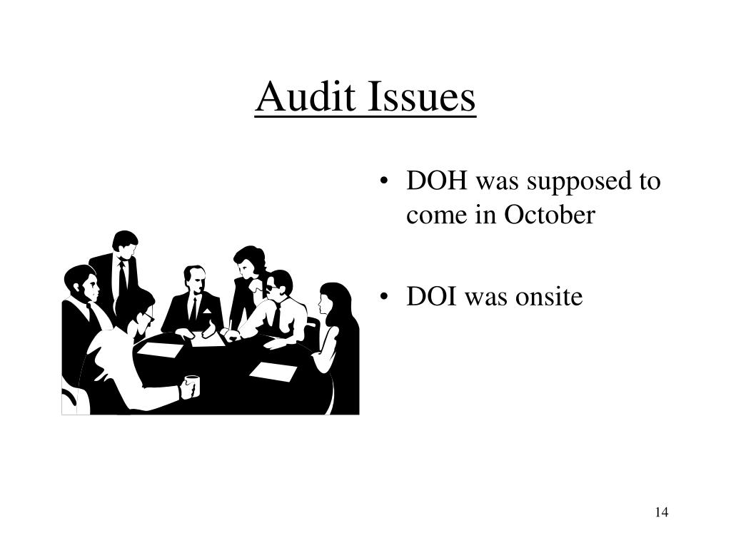 Audit Issues