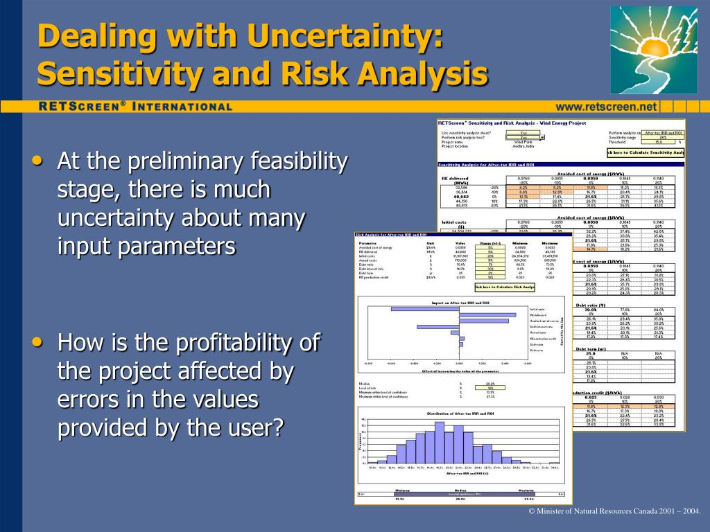 Dealing with Uncertainty: Sensitivity and Risk Analysis