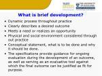 what is brief development
