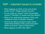 nsp important issues to consider