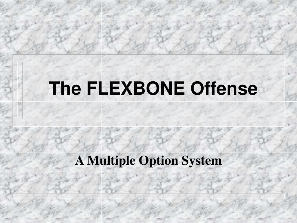the flexbone offense l.