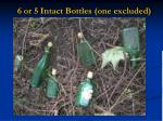6 or 5 intact bottles one excluded