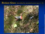 broken glass identified by attached crown cap n 3