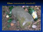 glass intentionally smashed