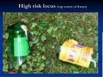 high risk locus top centre of frame