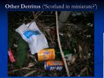 other detritus scotland in miniature