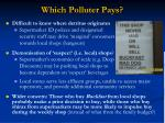which polluter pays