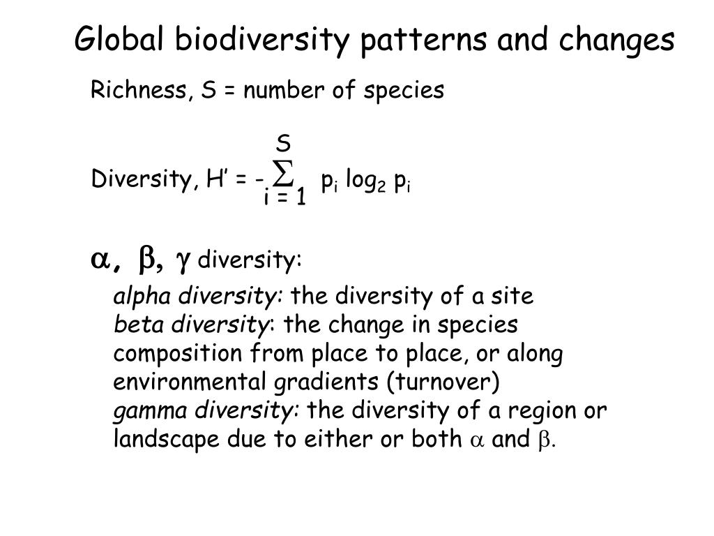 global biodiversity patterns and changes l.