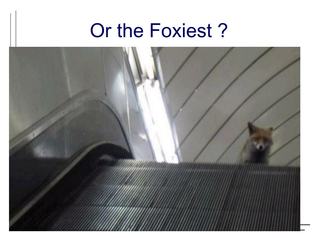 Or the Foxiest ?