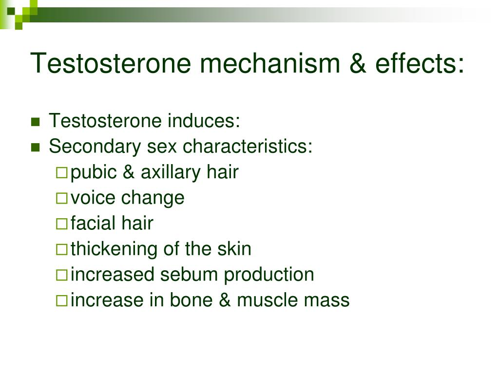 Testosterone mechanism & effects: