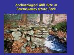 archaeological mill site in pawtuckaway state park