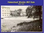 homestead woolen mill dam gone now
