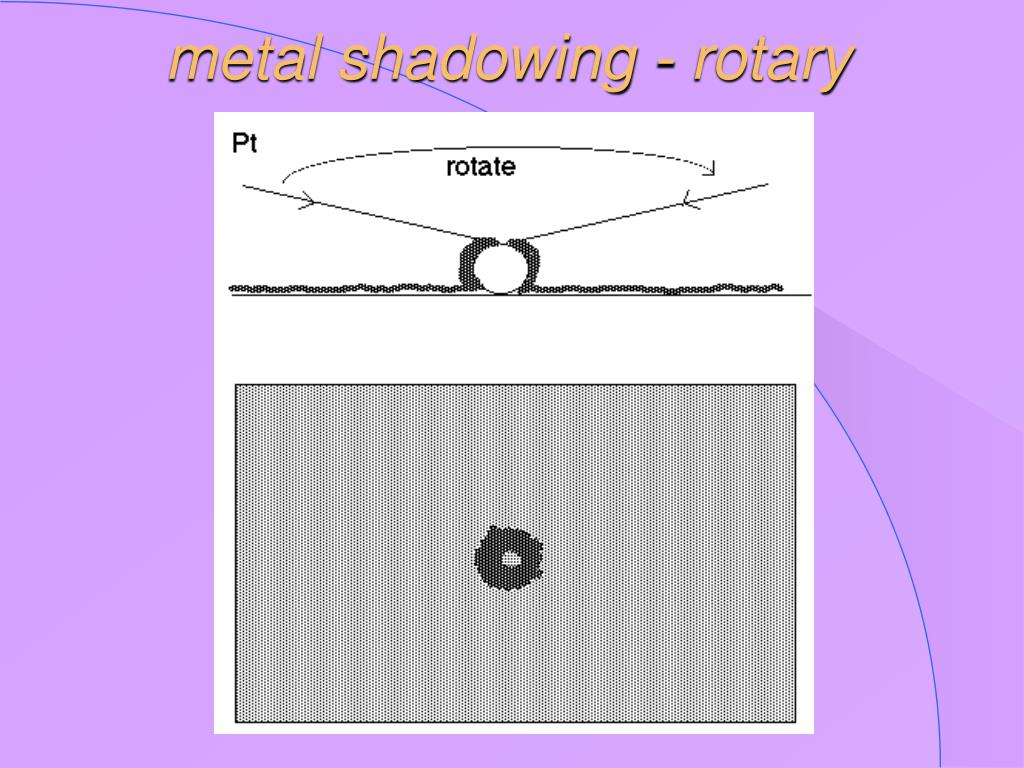 metal shadowing - rotary