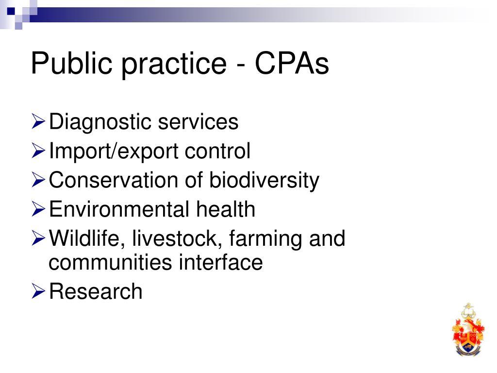Public practice - CPAs