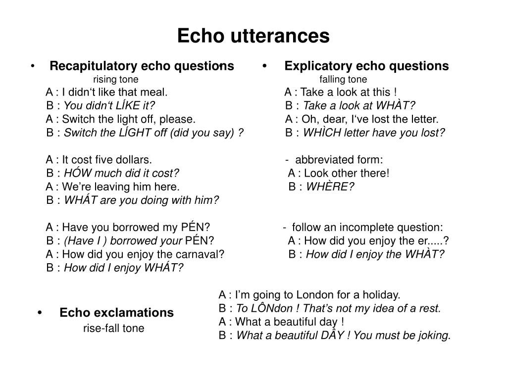 Recapitulatory echo questions