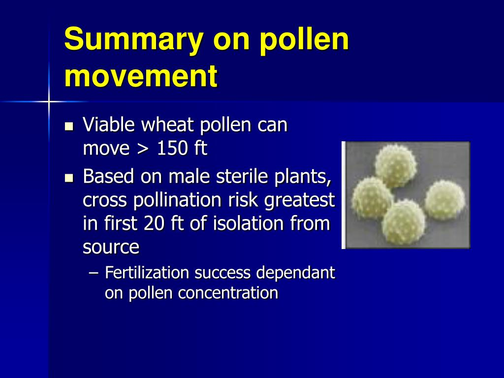 Summary on pollen movement