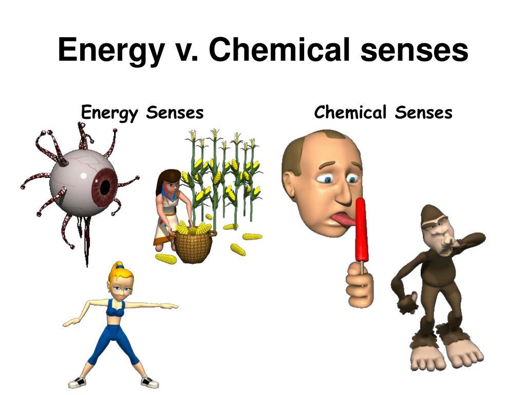 Energy v. Chemical senses