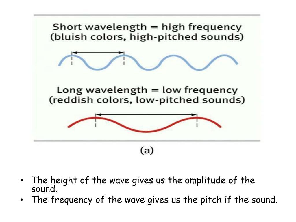 We hear sound WAVES