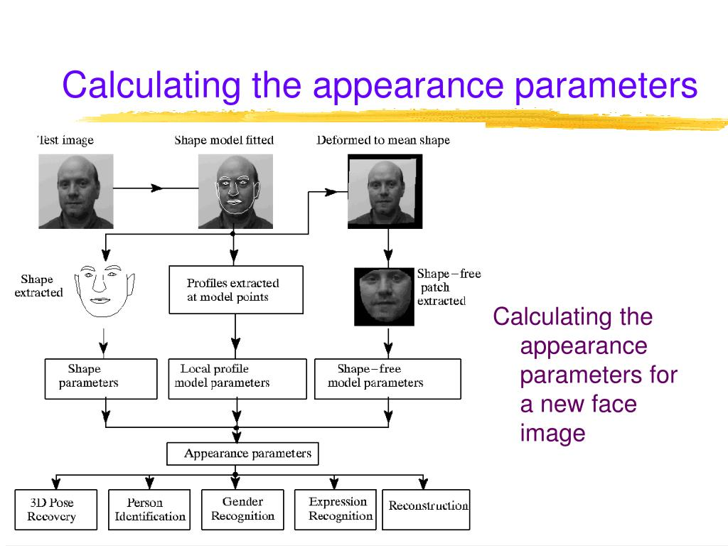 Calculating the appearance parameters