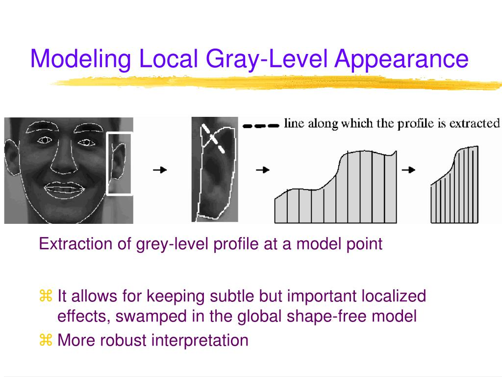 Modeling Local Gray-Level Appearance
