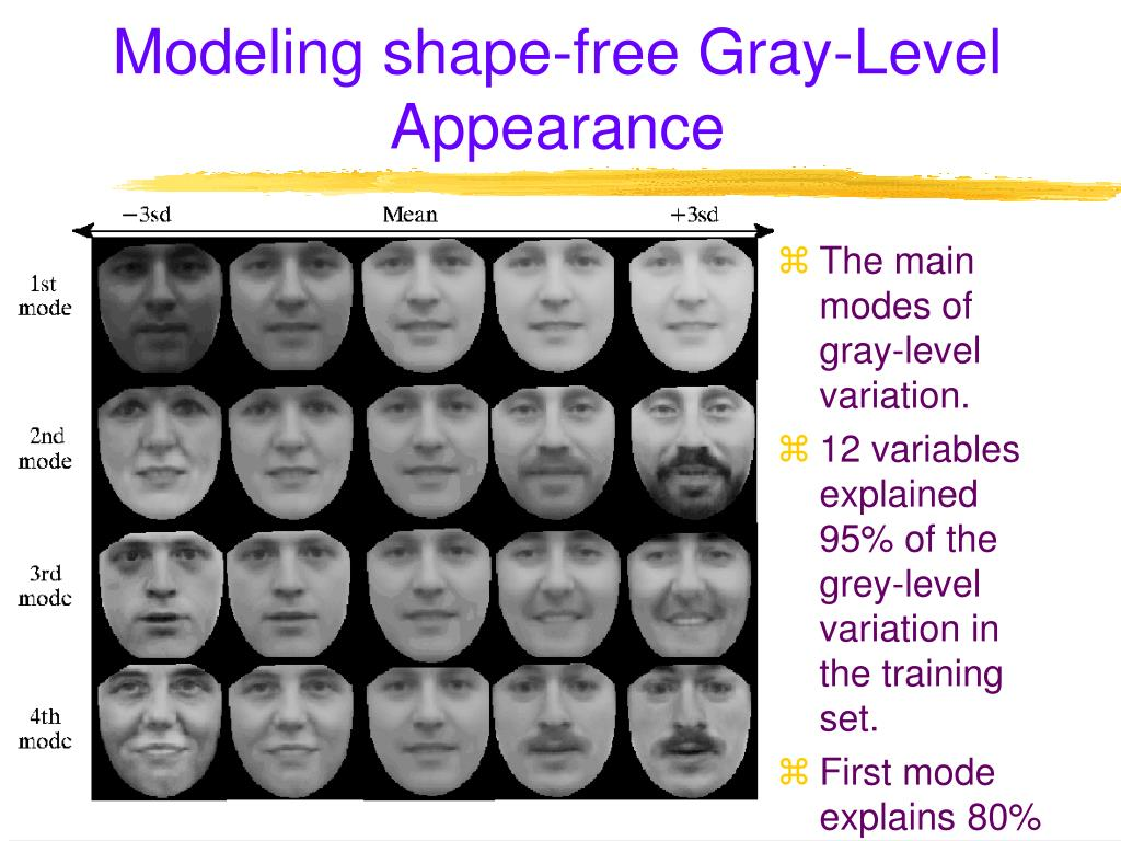 Modeling shape-free Gray-Level Appearance