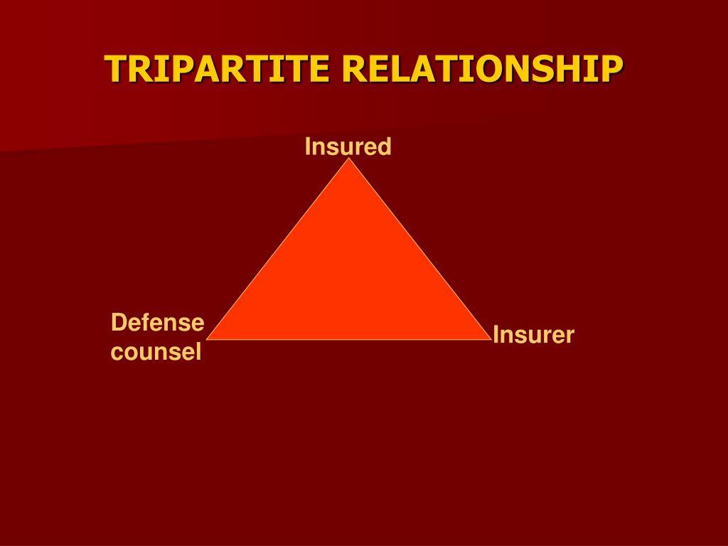 TRIPARTITE RELATIONSHIP