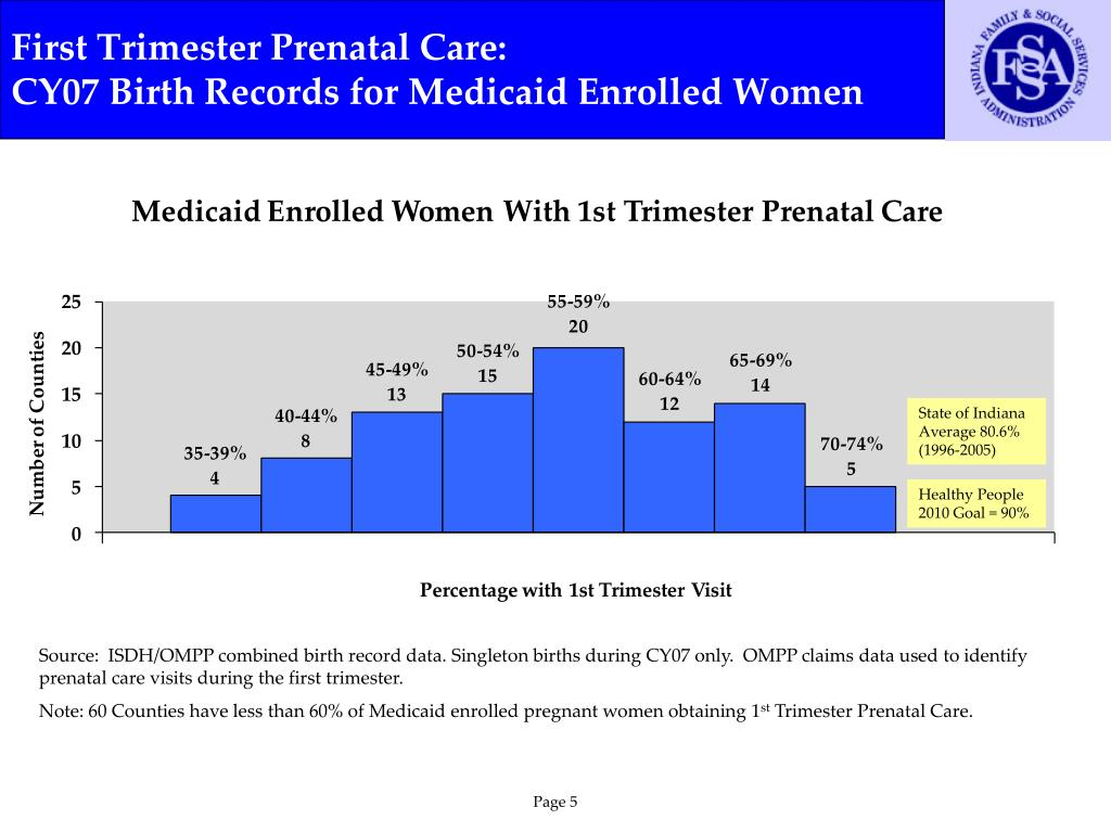 First Trimester Prenatal Care: