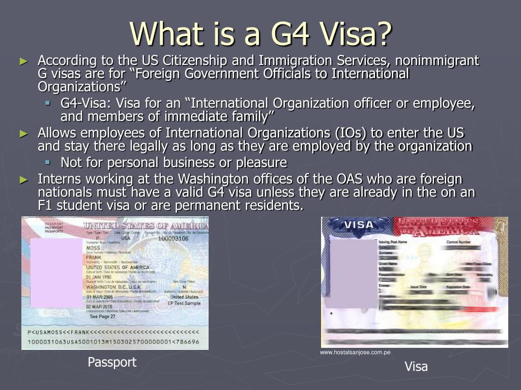 What is a G4 Visa?