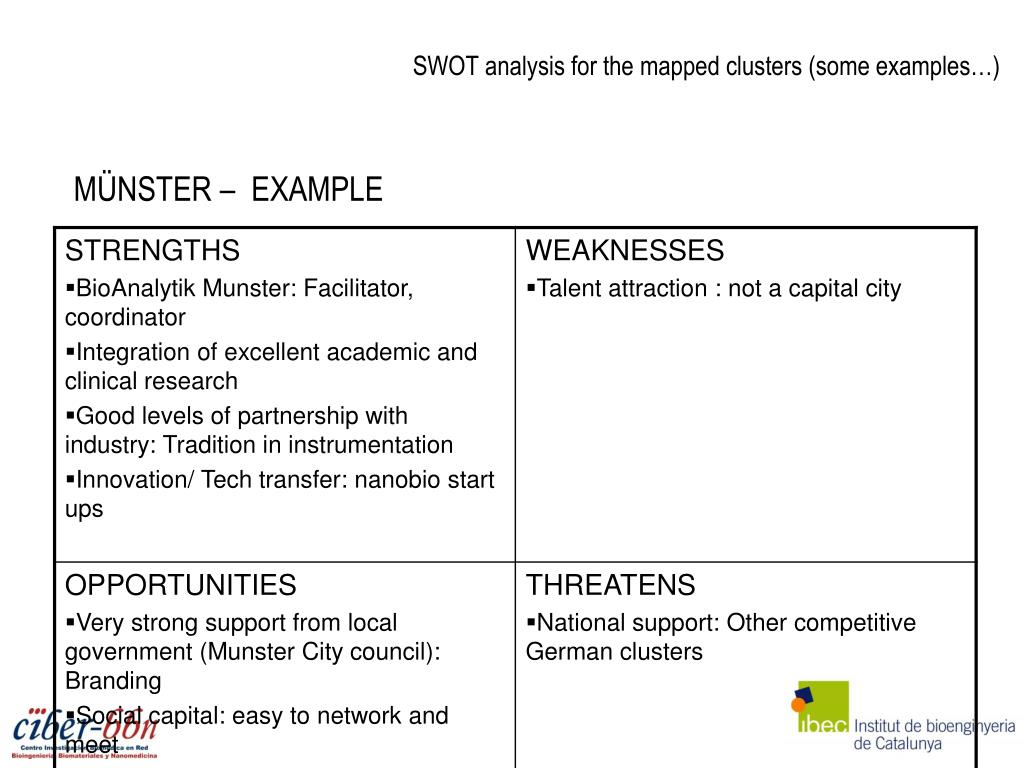 SWOT analysis for the mapped clusters (some examples…)