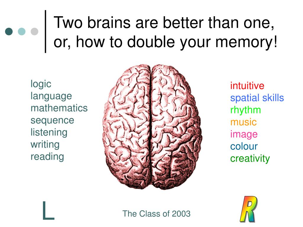 Two brains are better than one, or, how to double your memory!