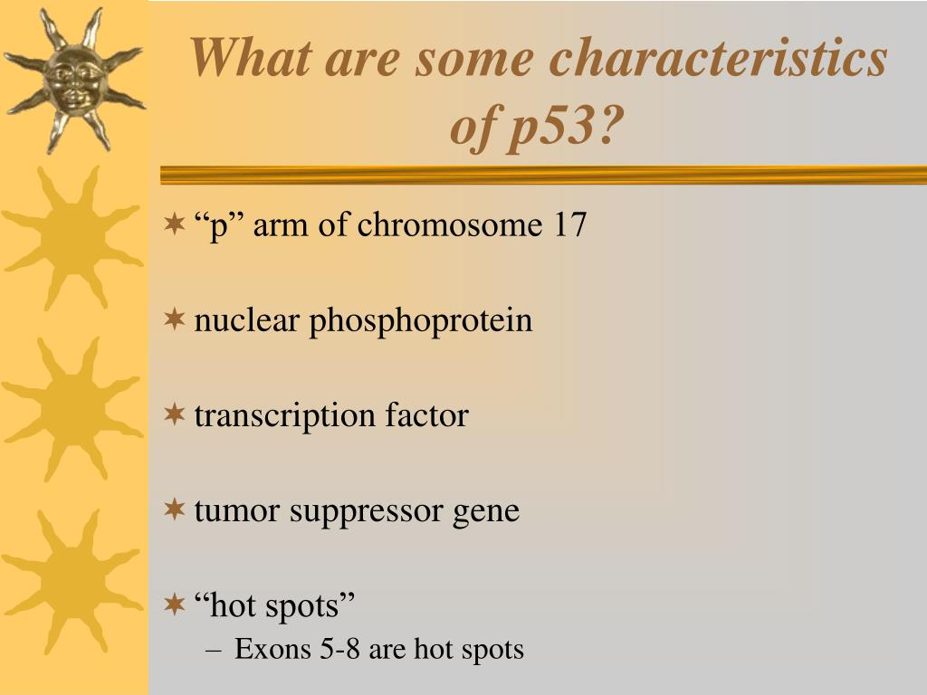 What are some characteristics of p53?