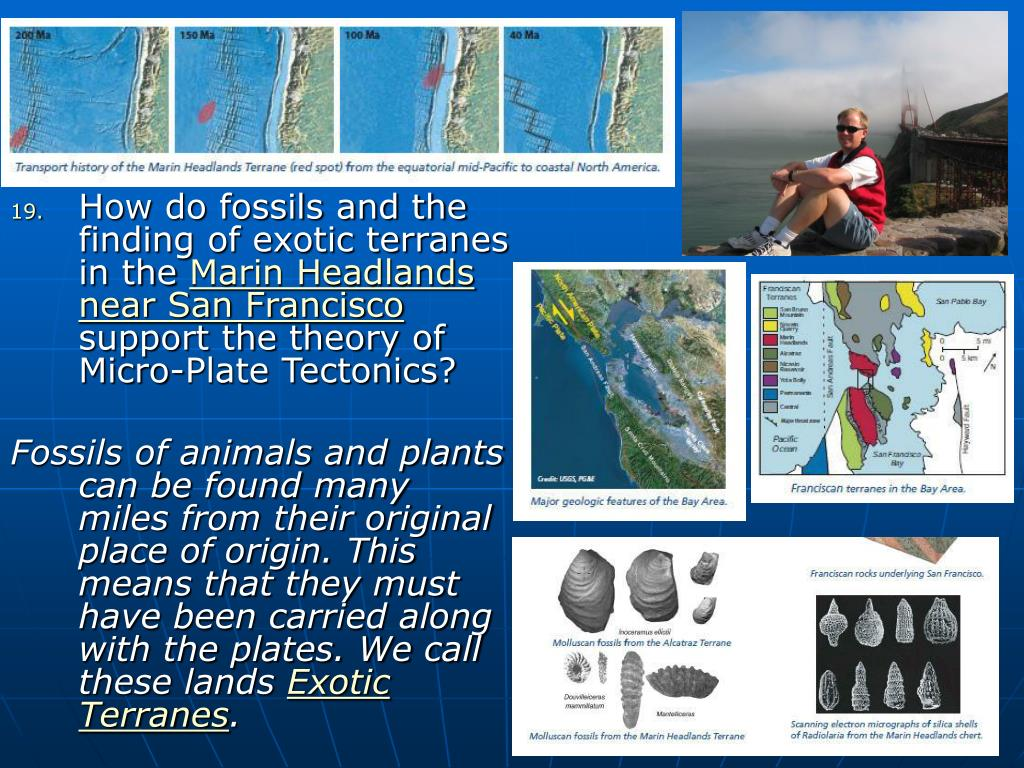 How do fossils and the finding of exotic terranes in the