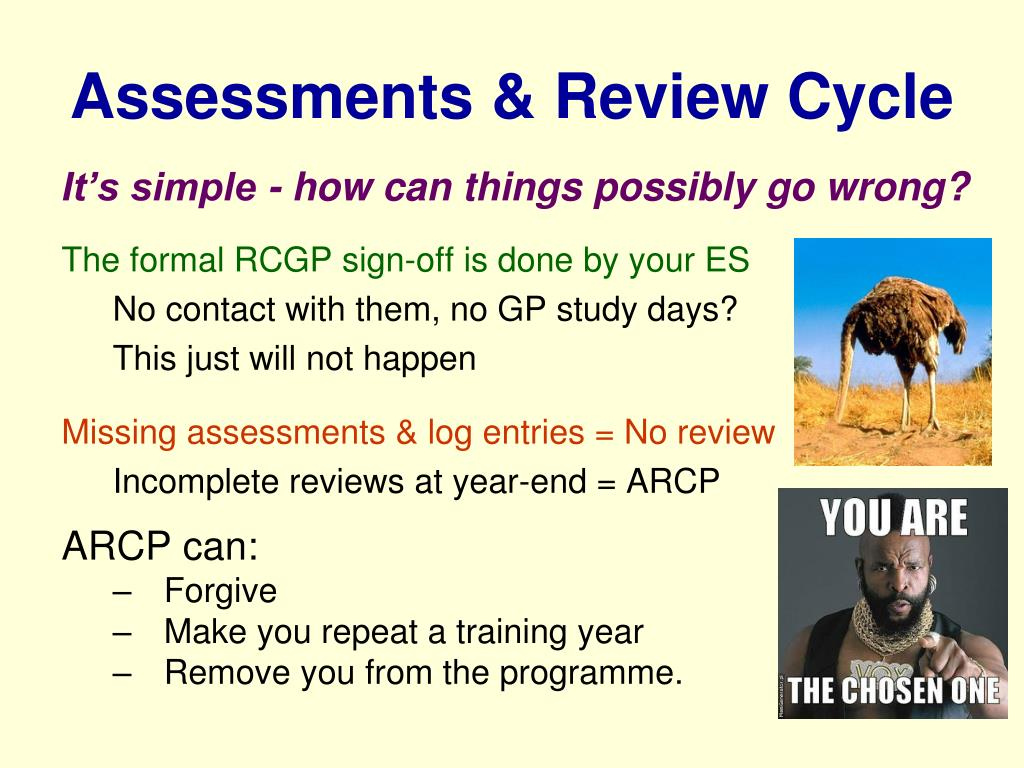 Assessments & Review Cycle