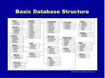 basic database structure