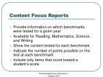 content focus reports