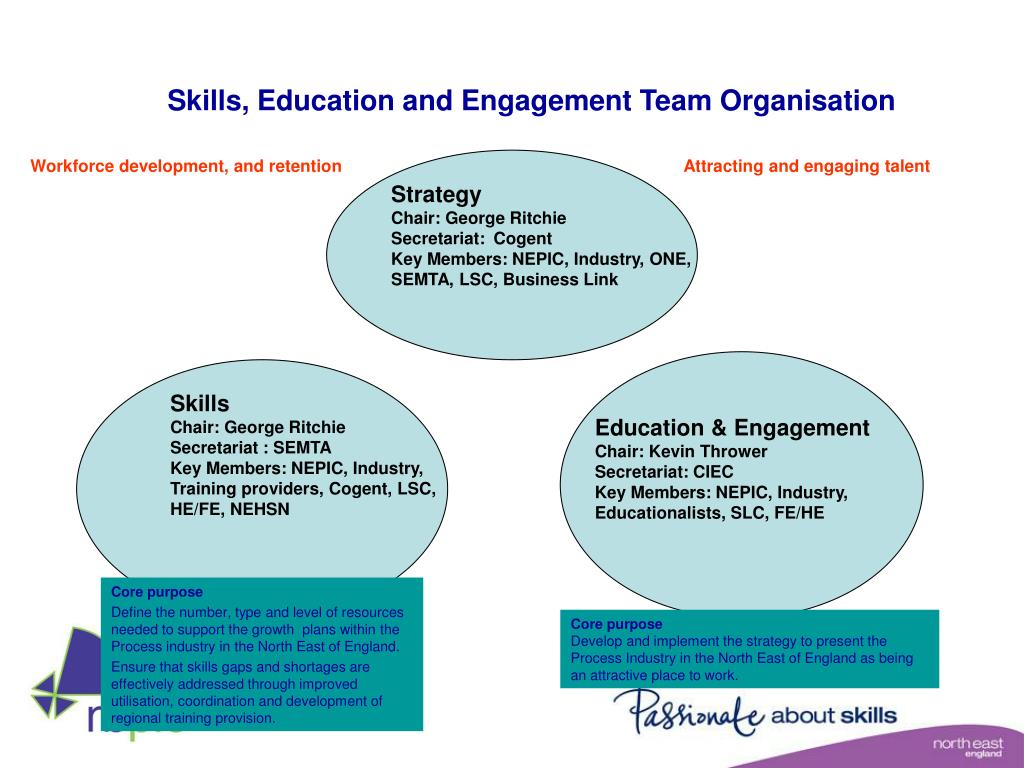 Skills, Education and Engagement Team Organisation