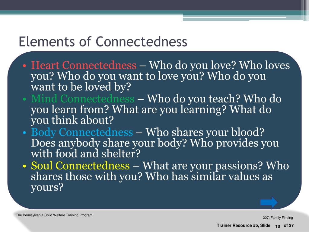 Elements of Connectedness