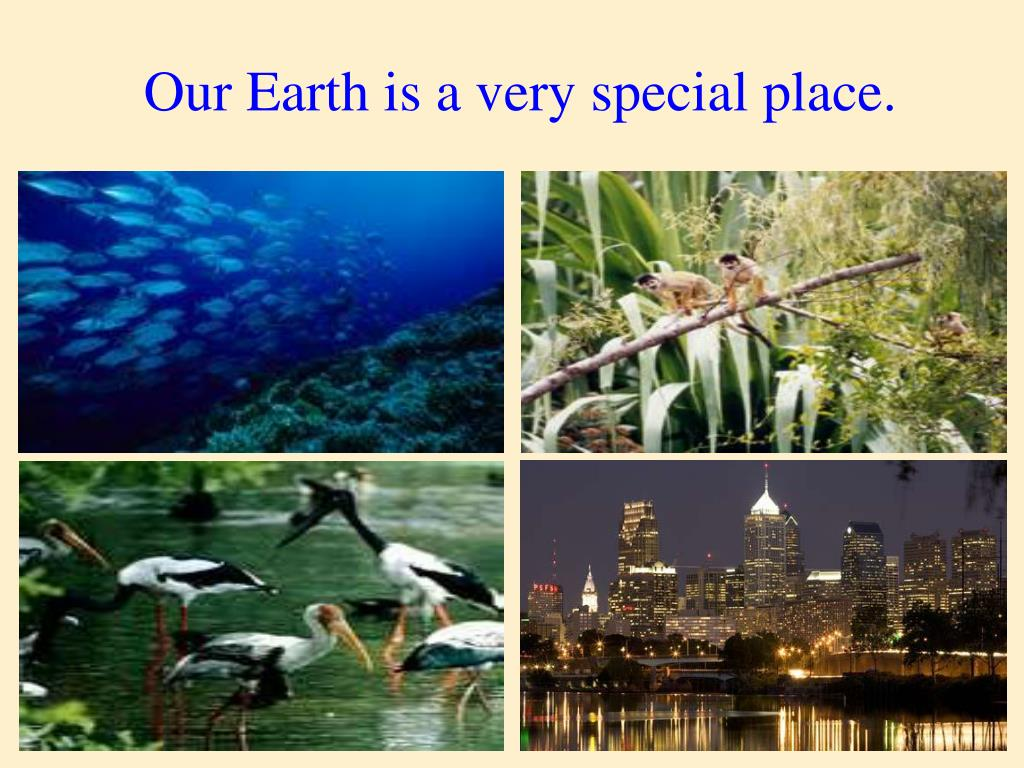 Our Earth is a very special place.