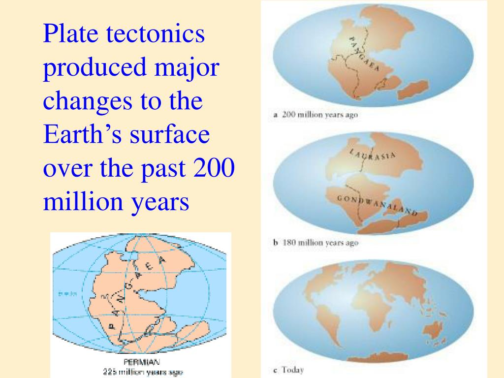 Plate tectonics produced major changes to the Earth's surface over the past 200 million years
