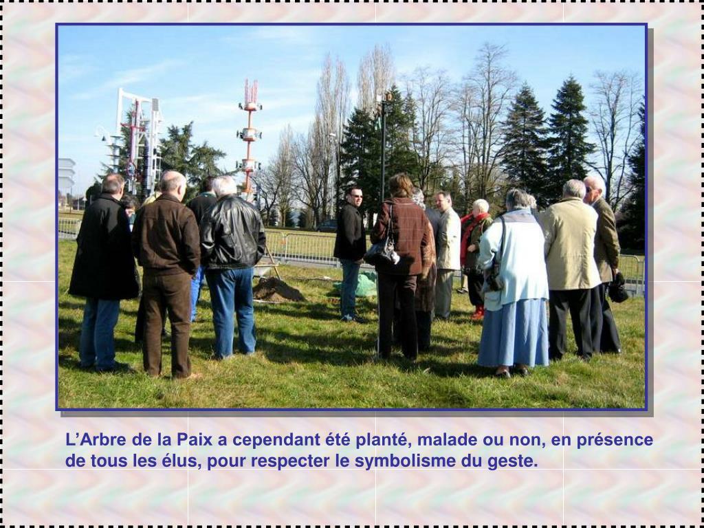 L'Arbre de la Paix a cependant été planté, malade ou non, en présence de tous les élus, pour respecter le symbolisme du geste.