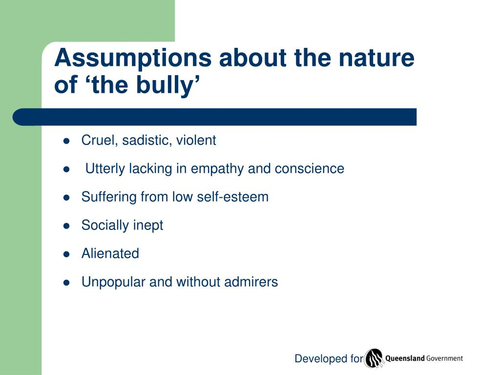 Assumptions about the nature of 'the bully'