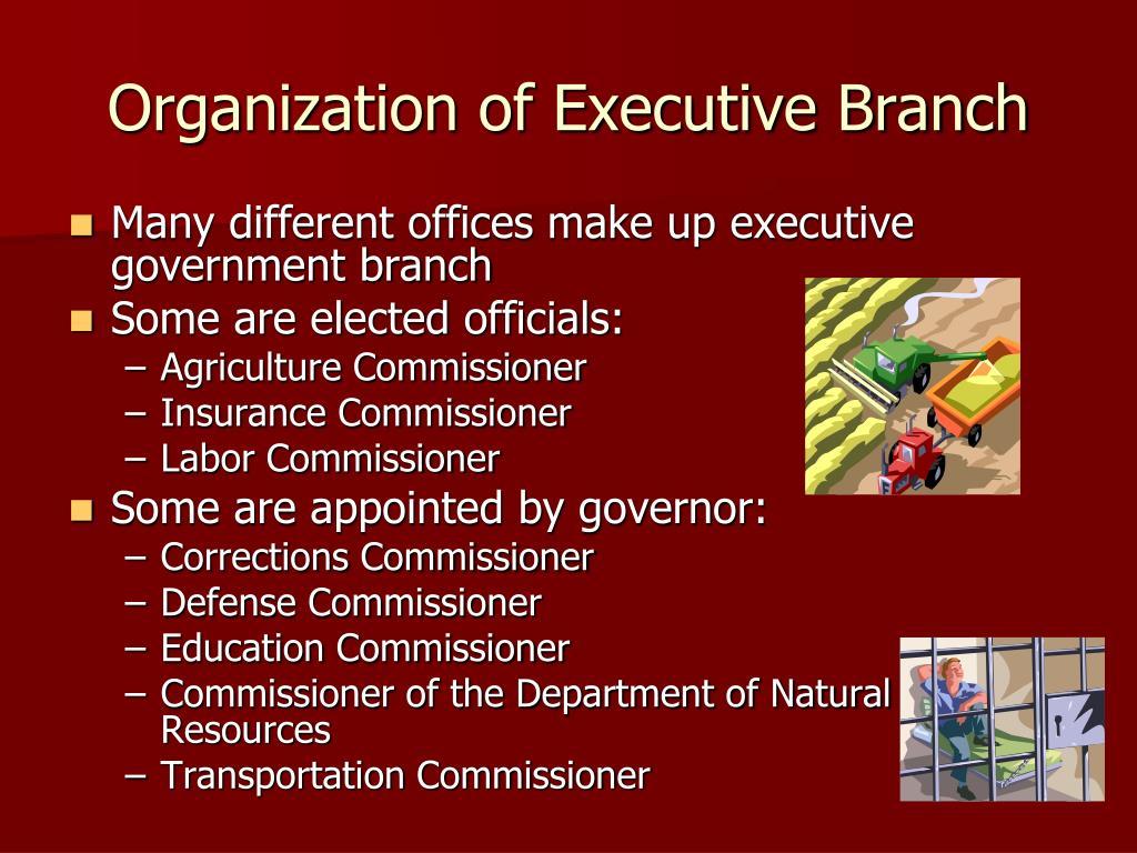 Organization of Executive Branch