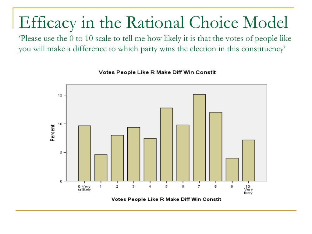 Efficacy in the Rational Choice Model