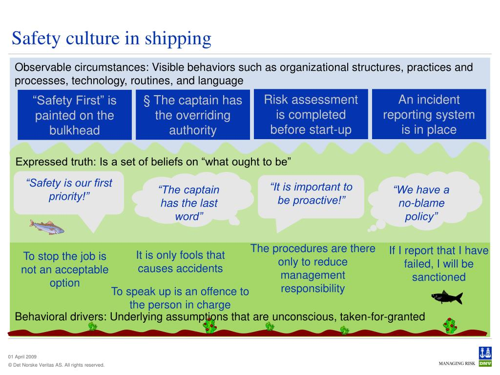 Safety culture in shipping