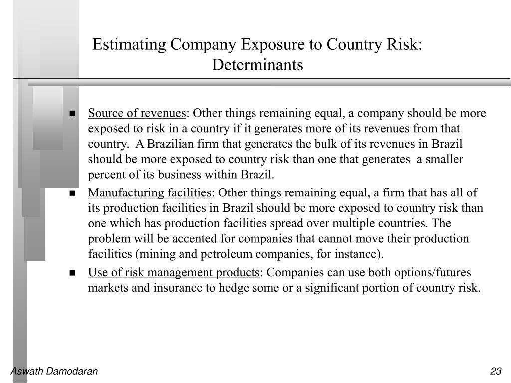 Estimating Company Exposure to Country Risk: Determinants