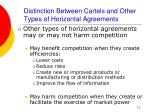distinction between cartels and other types of horizontal agreements12