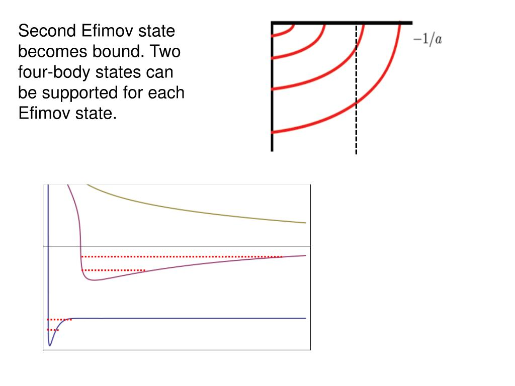 Second Efimov state becomes bound. Two four-body states can be supported for each Efimov state.