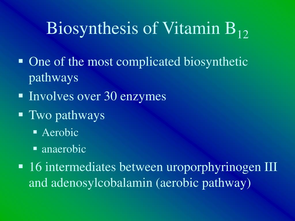 Biosynthesis of Vitamin B