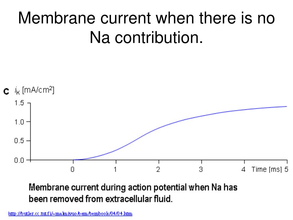 Membrane current when there is no Na contribution.
